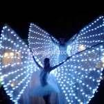 Show Farfalle Luminose per Taglio Torta Nuziale...Euro ......*