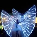 Show Farfalle Luminose