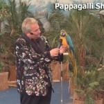 Nelson e i suoi Papagalli