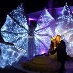 Locandina Promo Farfalle Luminose