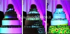 Show delle Luci su Torta  (Mapping Cake)