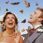 volo farfalle depliant