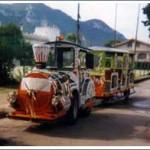 Trenino Diesel da Noleggio
