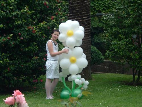Decorazioni Sala Laurea : Addobbi e scenografie con palloncini artisti di strada i giullari