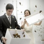 Volo delle Farfalle per Sposi