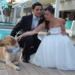Servizio Dogs Parking per Matrimonio doc