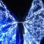 Show Farfalle Luminose per gran finale Cerimonie e Party doc 1- trimmed - snapshot