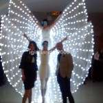 Farfalle Luminose per Eventi
