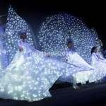 Show Trampolieri Farfalle Luminose