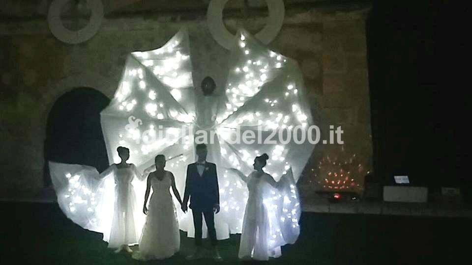 farfalle-luminose-show